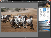 Bild von InPixio Photo Focus Professional [PC-Software]