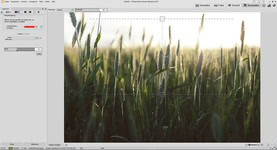 Bild von ACDSee Photo Studio 2018 Standard [PC-Software]