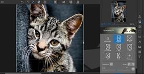 Bild von inPixio Photo Eraser 9 [PC-Software]