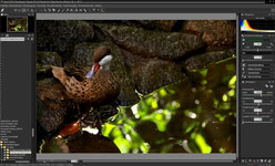 Bild von Silkypix Developer Studio Pro 6 [Mac-Software]