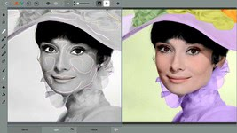 Bild von Codijy Colorization Professional [Mac-Software]