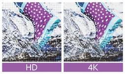 Bild von Adobe Premiere Elements 14 [MULTIPLATFORM]