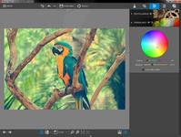 Bild von Fotos bearbeiten - Avanquest Kollektion [PC-Software]