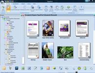 Bild von PaperPort 14 Professional [PC-Software]