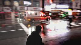 Bild von proDad proDAD VitaScene V3 LE [PC-Software]