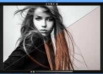 Bild von SILVER projects professional [PC-Software]