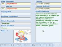Bild von Fit in Deutsch - Diktattrainer - Klasse 1 [PC-Software]
