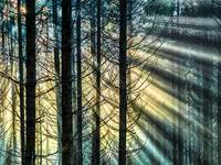 Bild von Franzis Pure HDR [PC-Software]