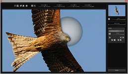 Bild von SHARPEN projects professional [Mac-Software]