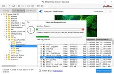 Bild von Stellar Windows Data Recovery 8 Standard [PC-Software]