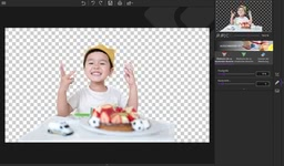 Bild von inPixio Photo Cutter 9 [PC-Software]